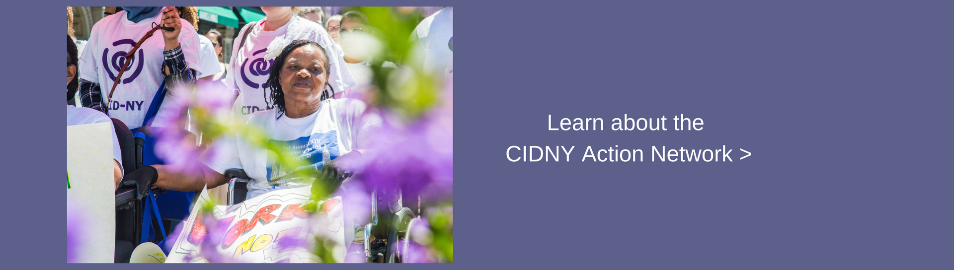 Learn about the CIDNY Action Network.
